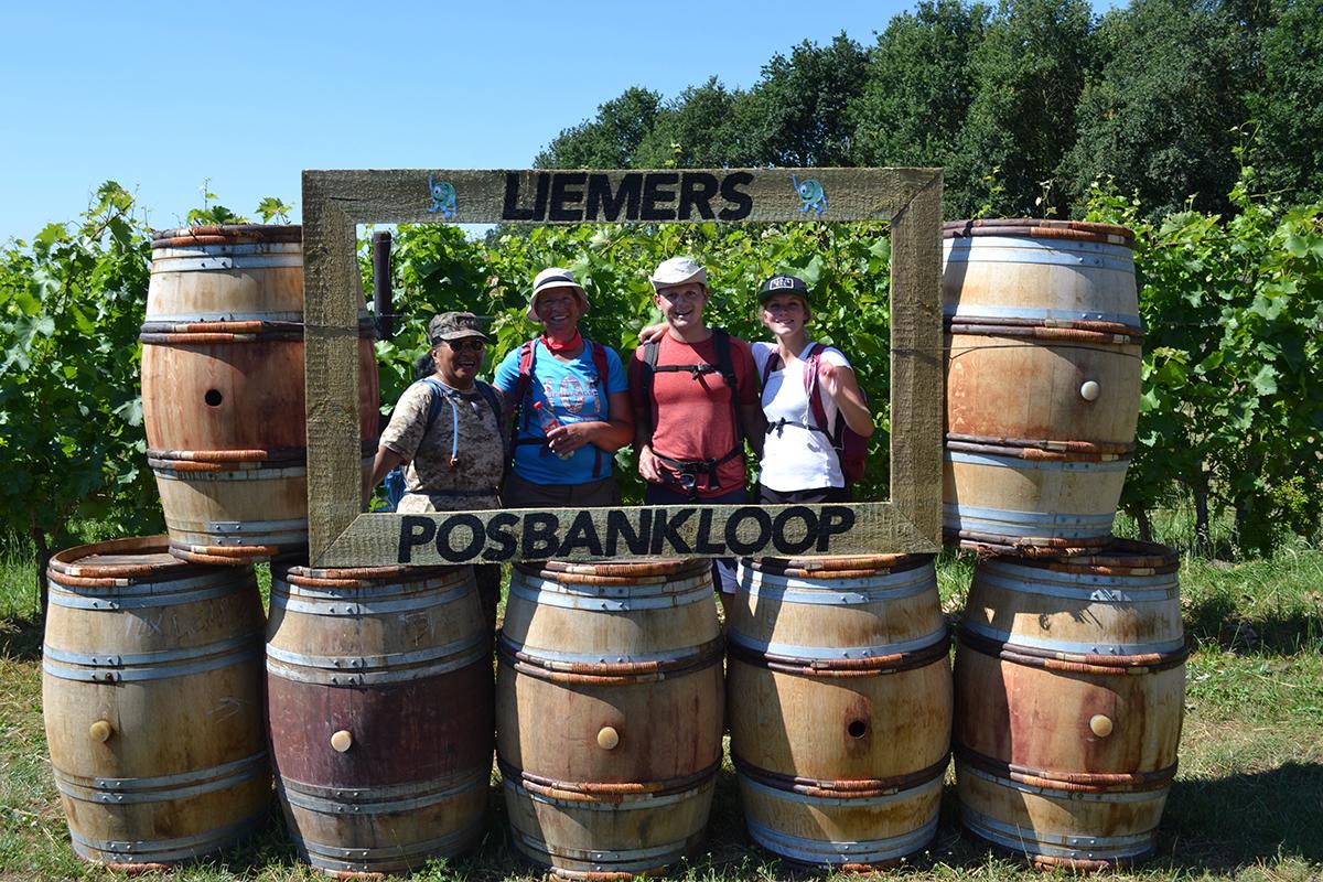 Liemers Posbankloop bij wijngaard Hof te Dieren